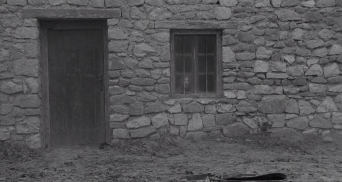 Calul din Torino 14 chipul fetei, ca o stafie, la fereastra